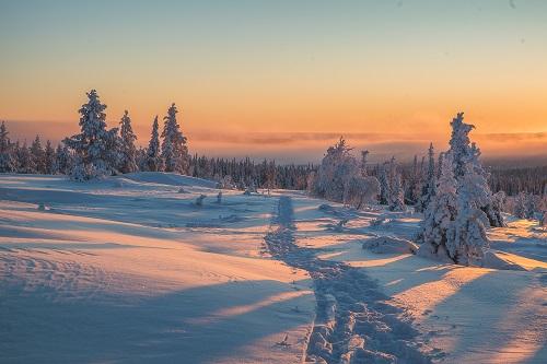 Credit Antti Pietikainen  (10) resized