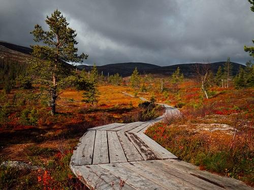 Autumn in Lapland Credit Julia Kivelä and Visit Finland