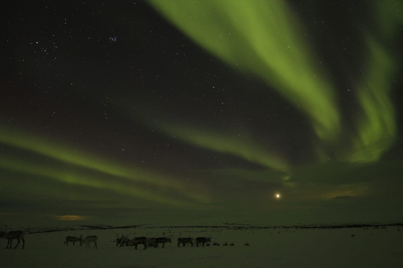 Cameron Rogers Utsjoki AuroraZoneMoments
