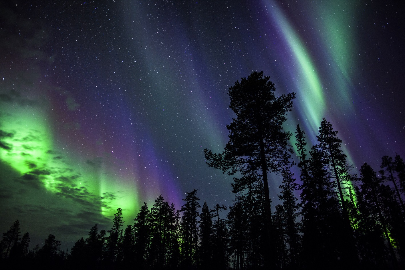 Credit Antti Pietikainen 452 2
