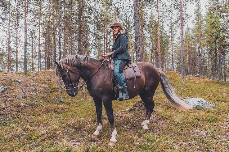 Harriniva Hotels Safaris Horses 7 2
