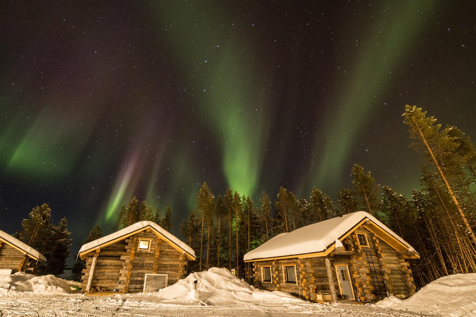 IMG 2908 Inari Credit Matt Robinson