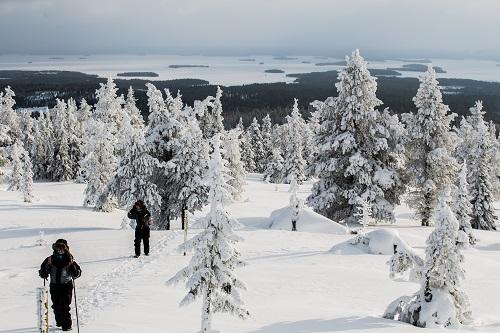 Snowshoeing 6 Credit Visit Rovaniemi Rovaniemi Tourism Marketing Ltd