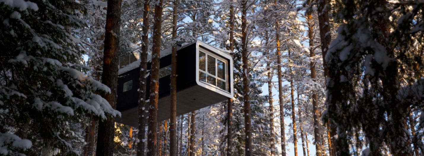northern lights at the treehotel in sweden. Black Bedroom Furniture Sets. Home Design Ideas