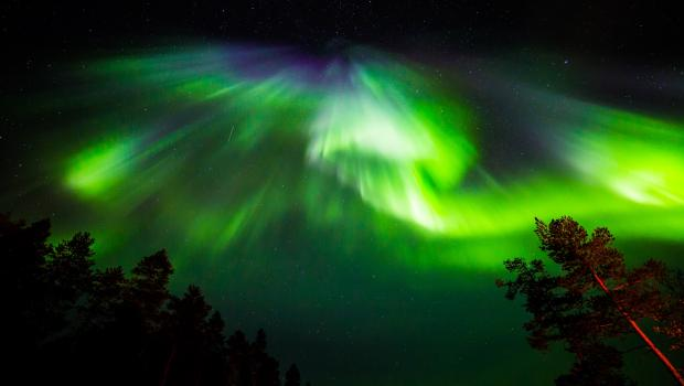 Kirkenes & Nellim - The Ultimate Aurora Trail